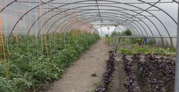 L'école du jardin professionnel